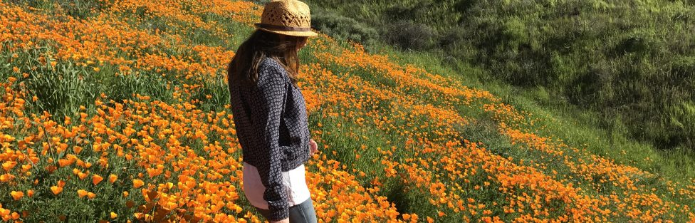 Through My Eyes: SoCal's Super Bloom